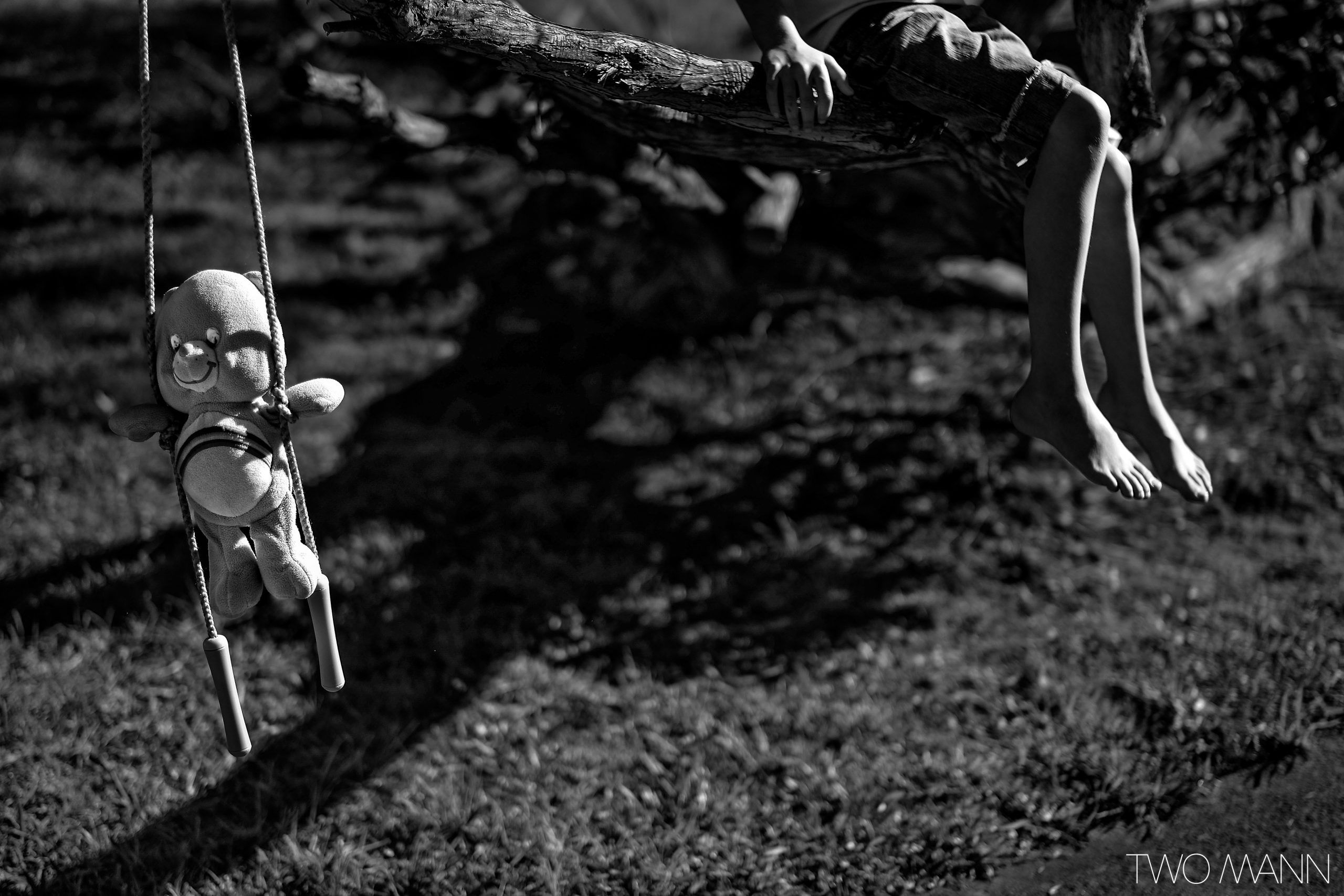 Stuffed teddy bear and skipping rope hanging on a tree branch