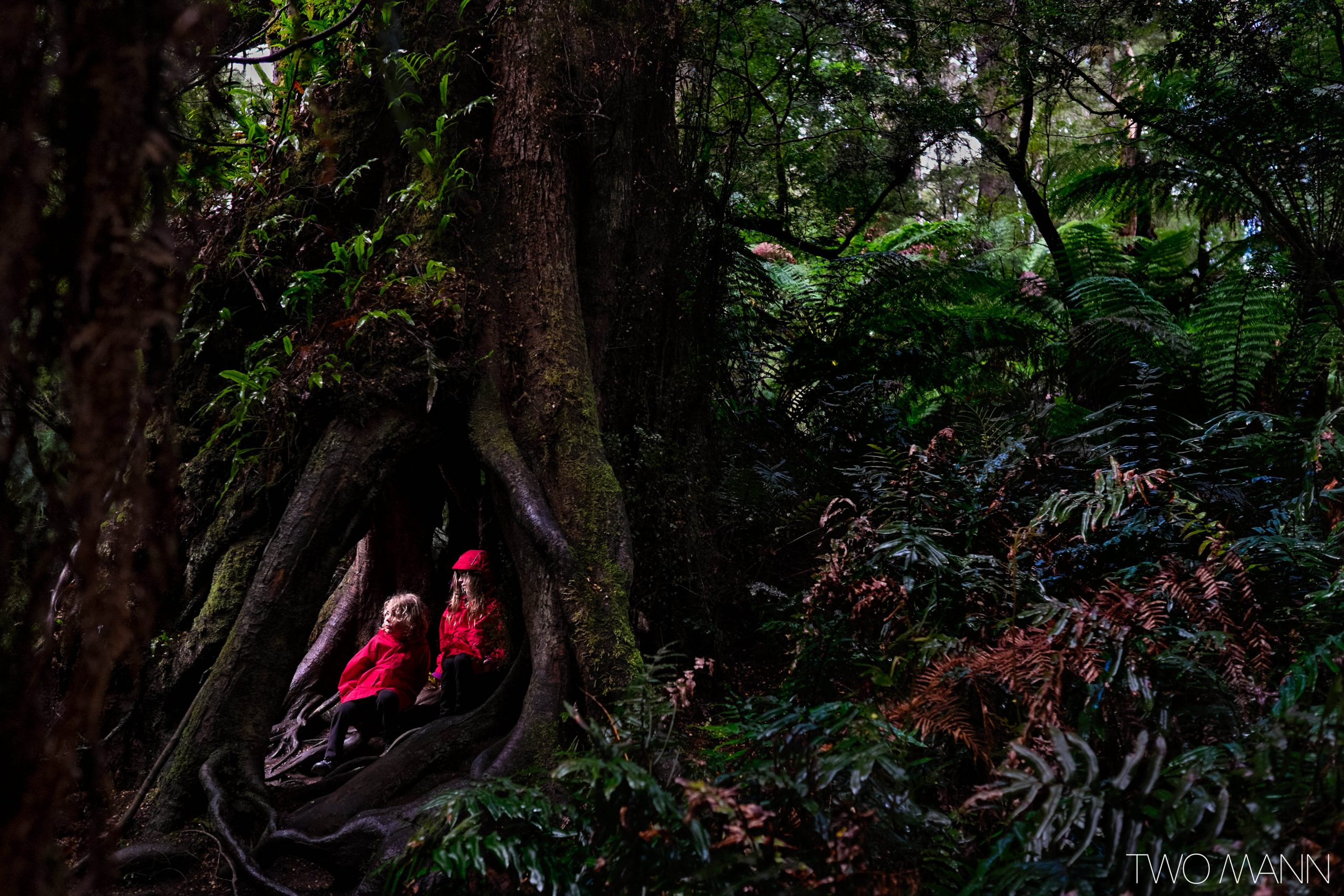 Kids hiding in hollowed tree trunk to avoid the rain storm