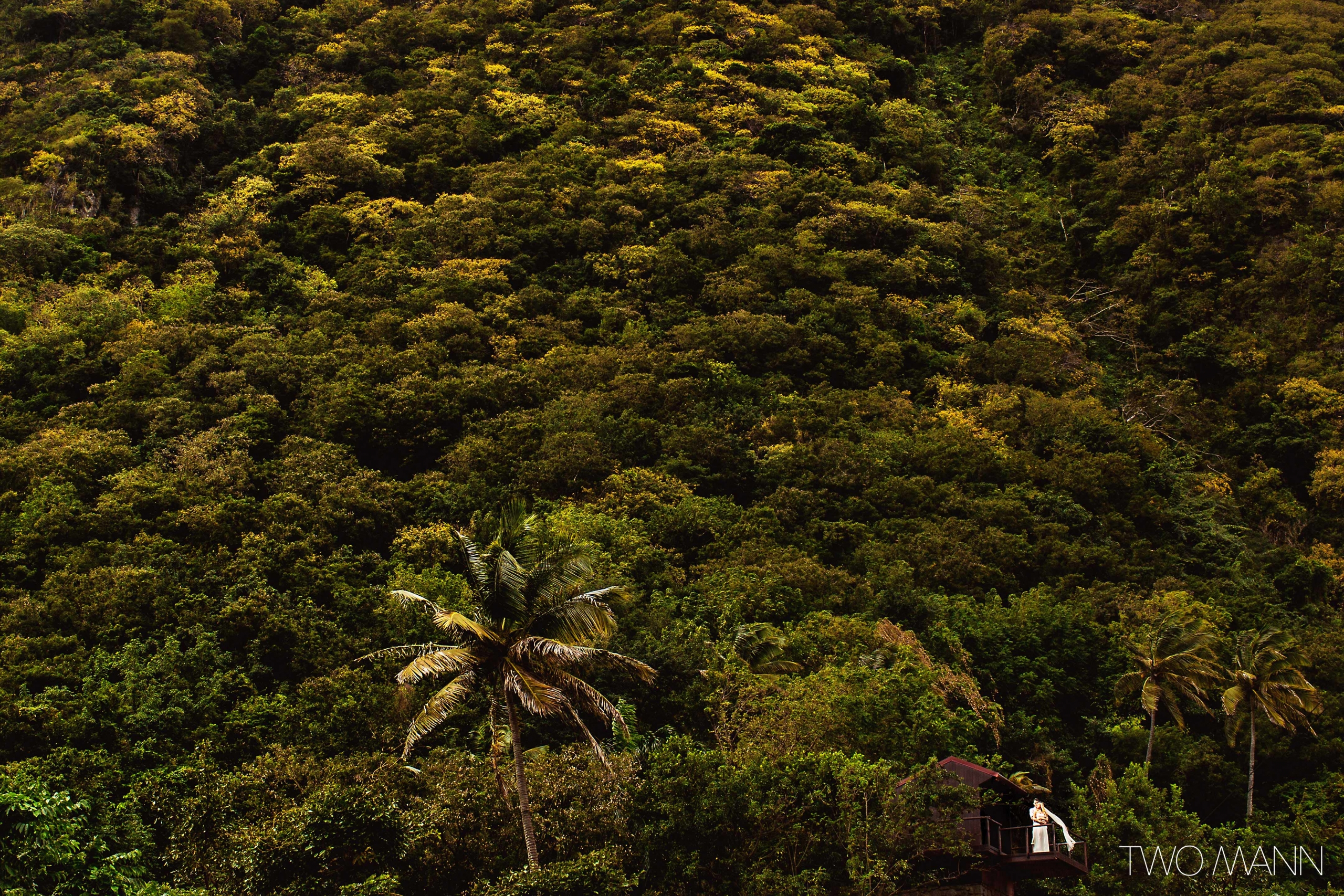 long shot of newlyweds standing on the terrace with background of tropical forest