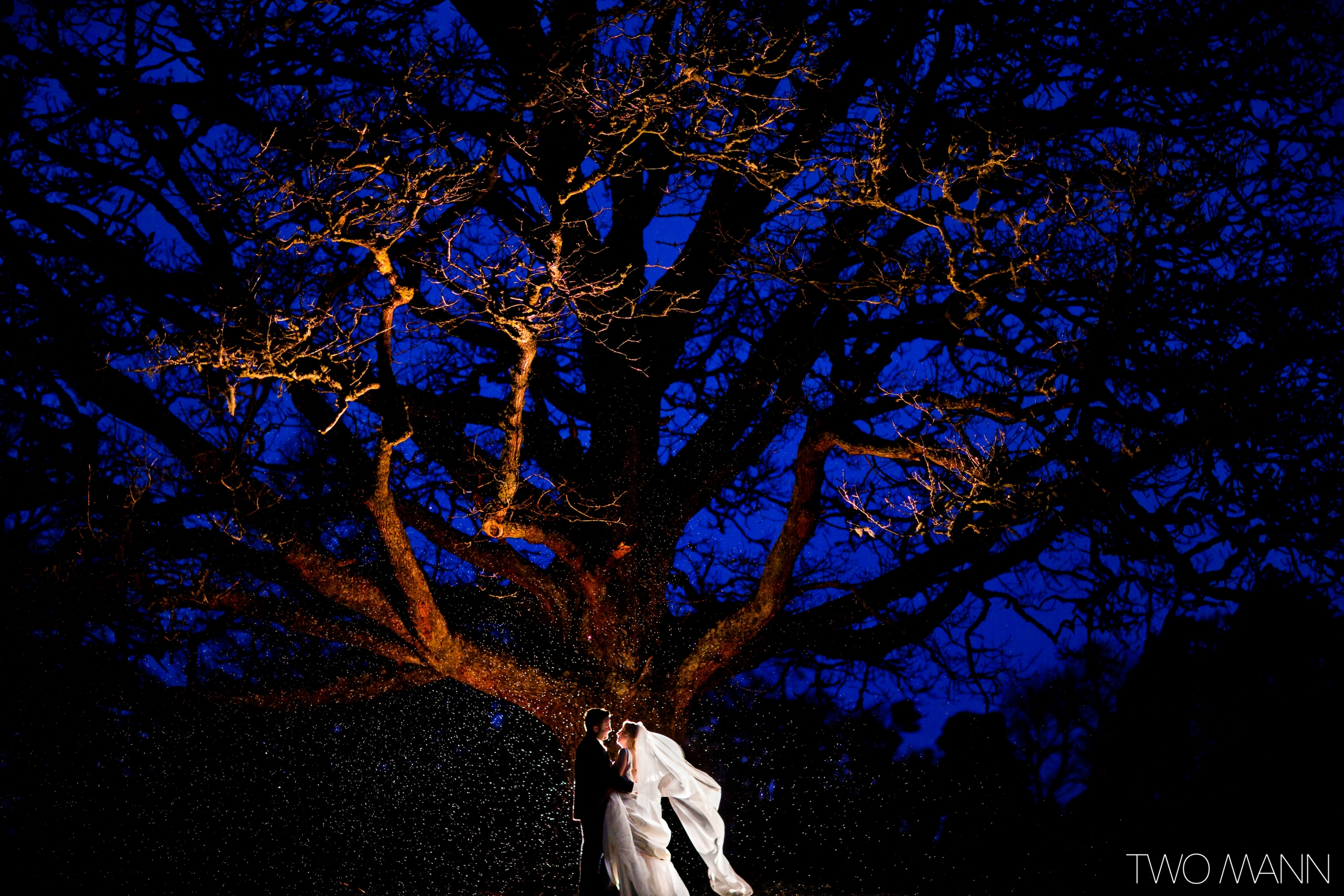 bride and groom embracing under a tree at night