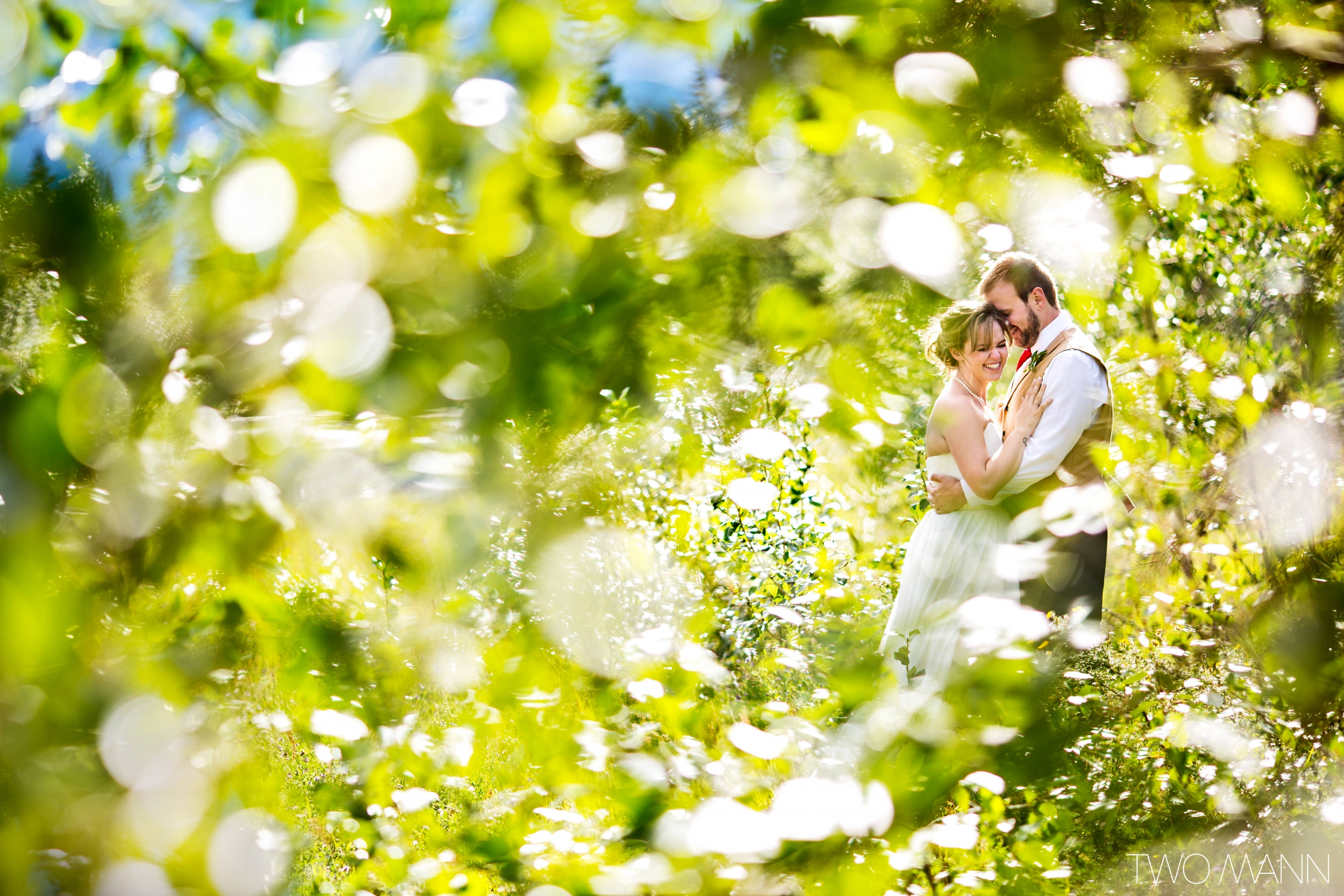 groom embracing bride in the forest in Canmore in the sunshine