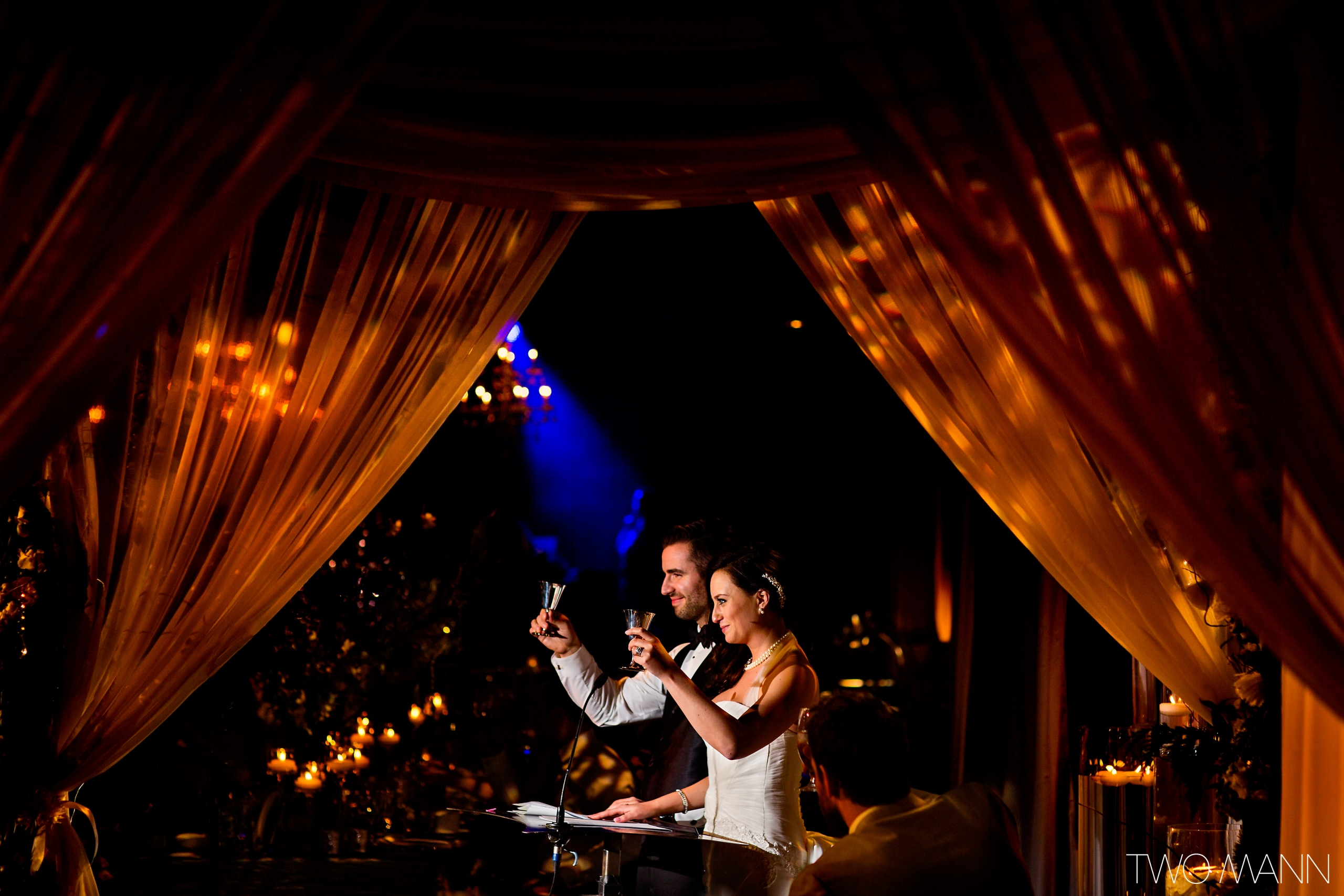 newlyweds giving toasts to wedding guests