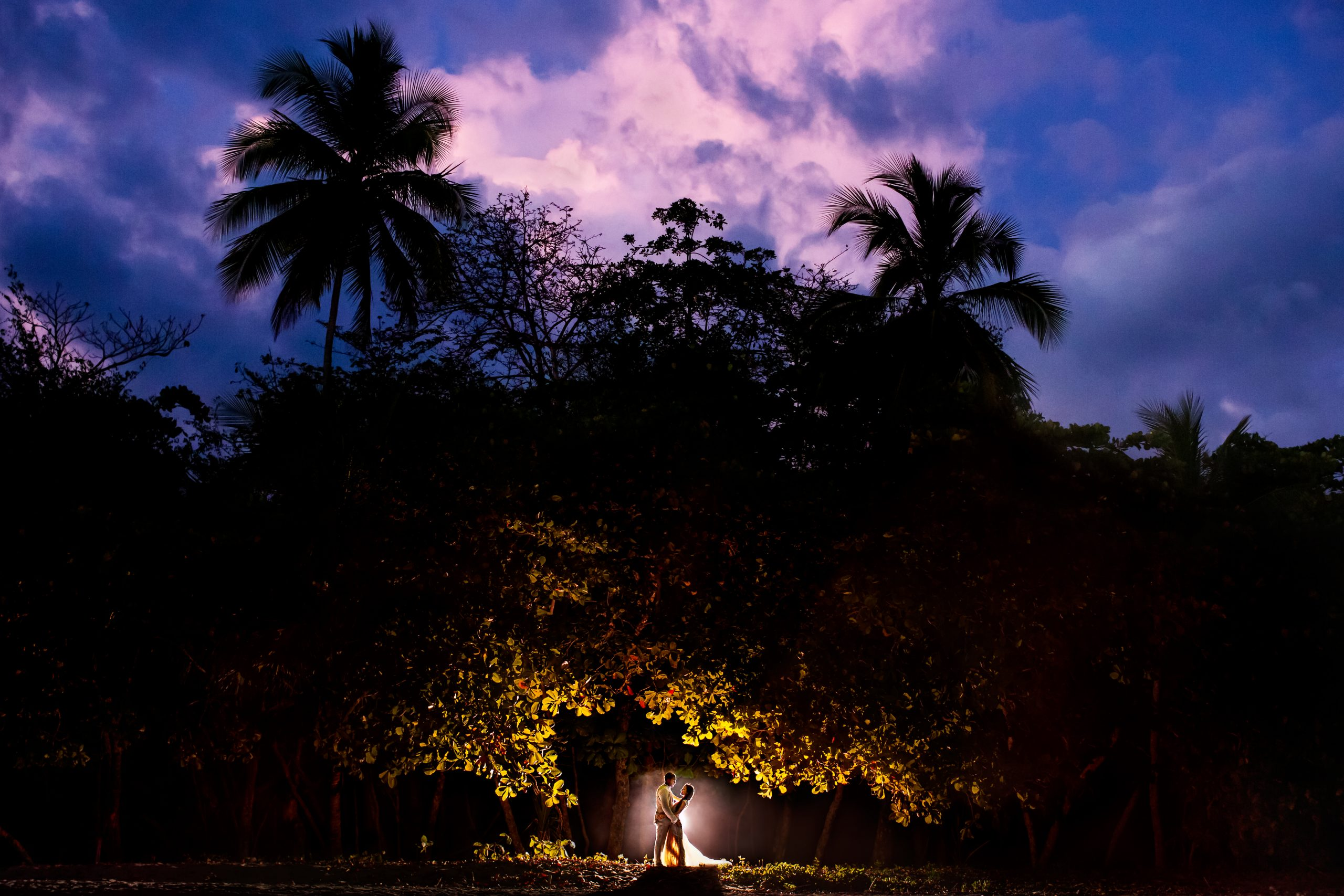 Groom holds bride at dusk in front of a grove of tropical trees