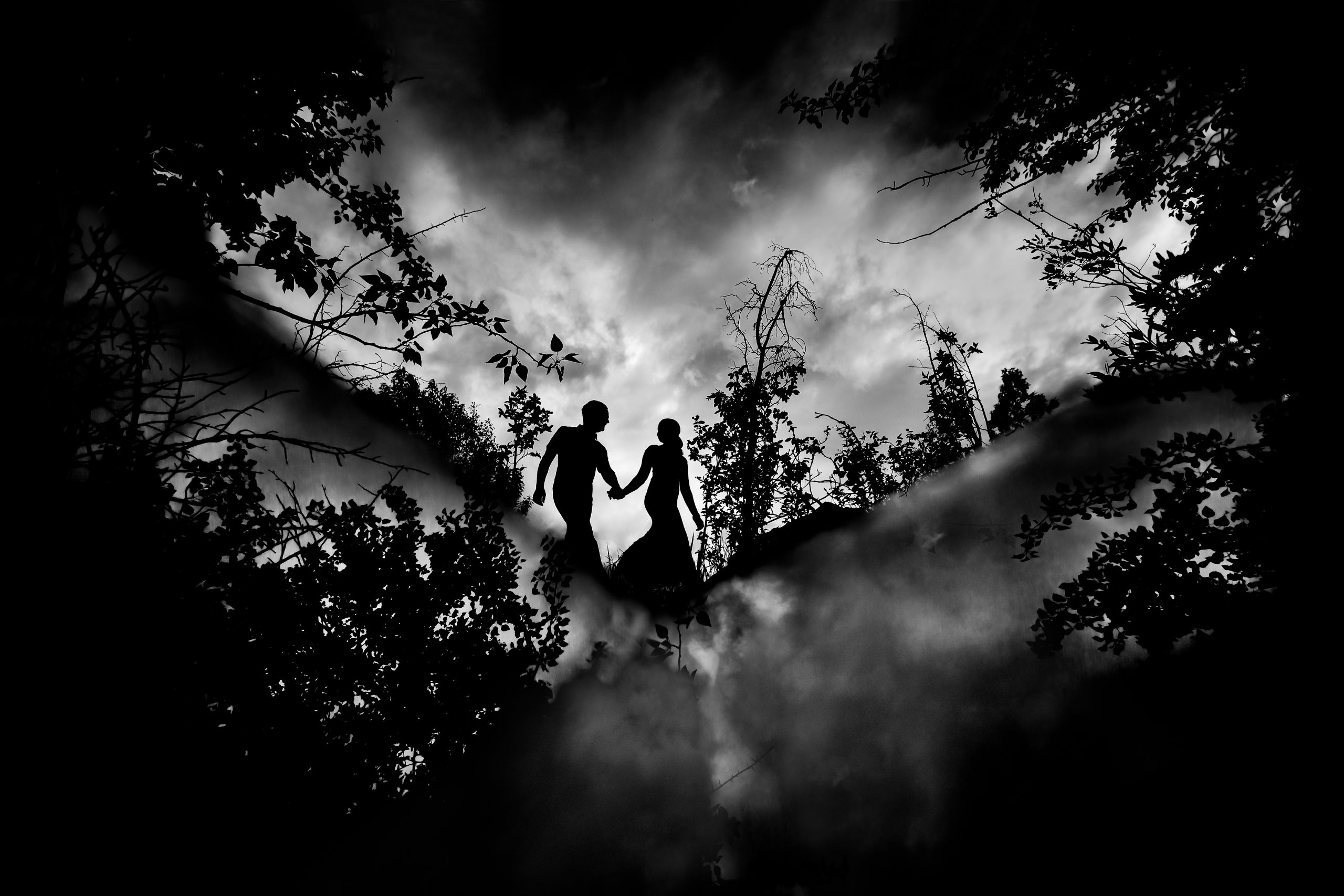 Silhouette of a couple holding hands surrounded by trees and fog