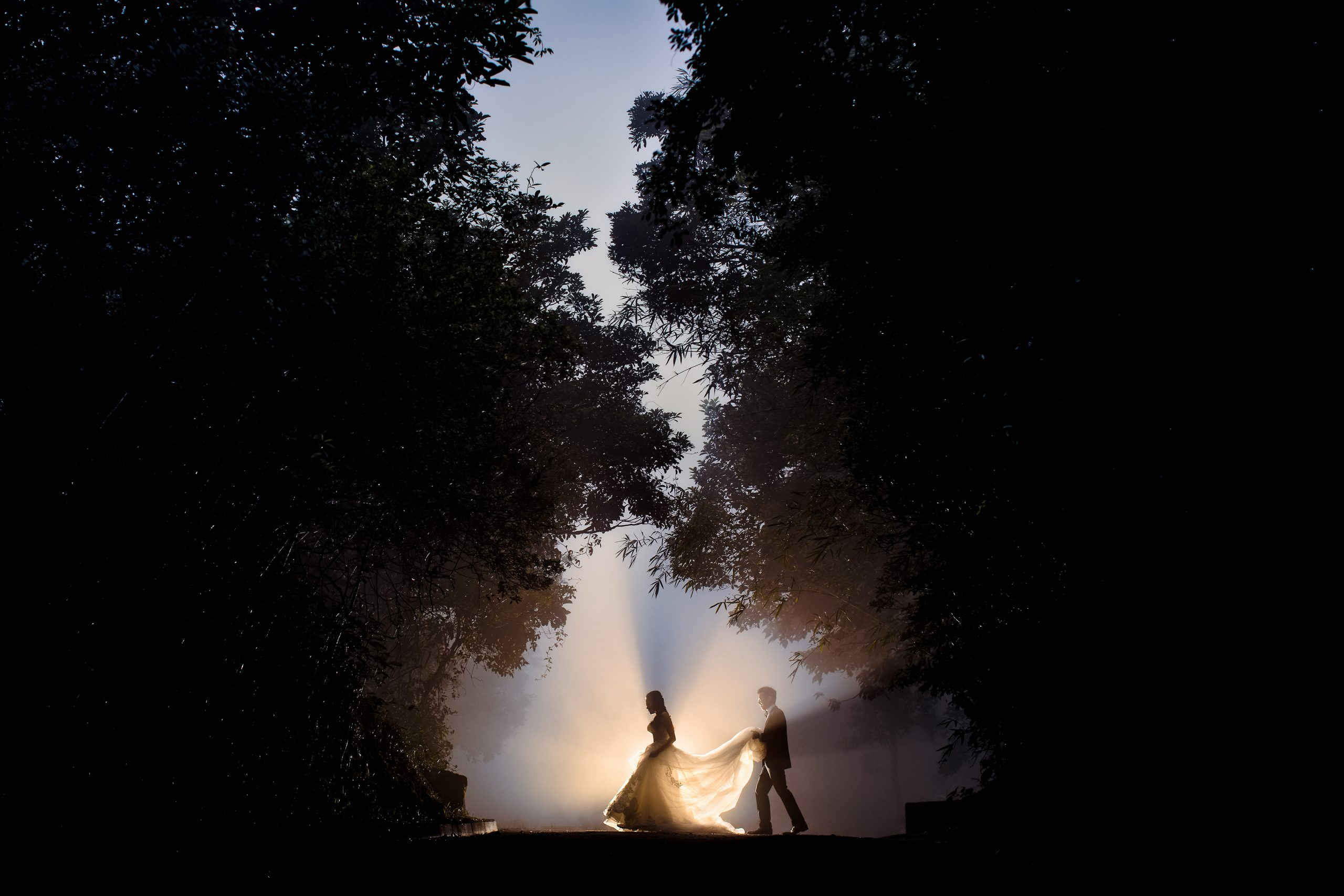Surrounded by dark trees, groom holds bride's dress as they walk with rays of sunlight illuminating the path they cross