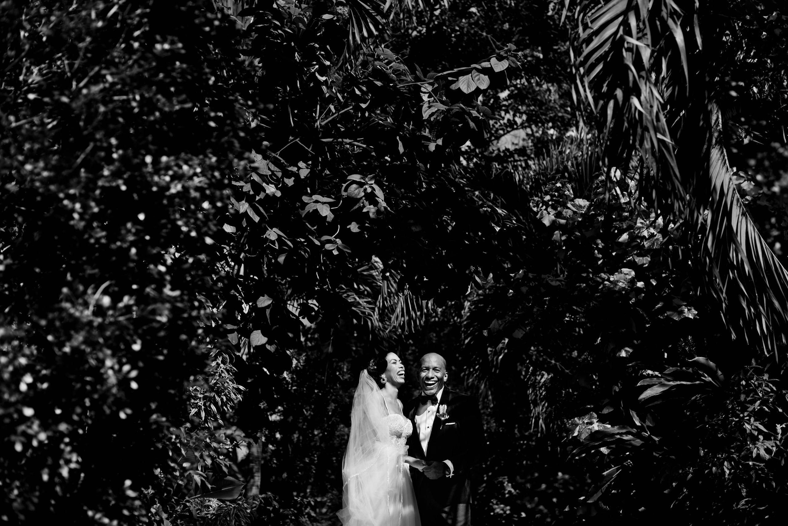 Bride and groom laugh together among tropical vegetation.